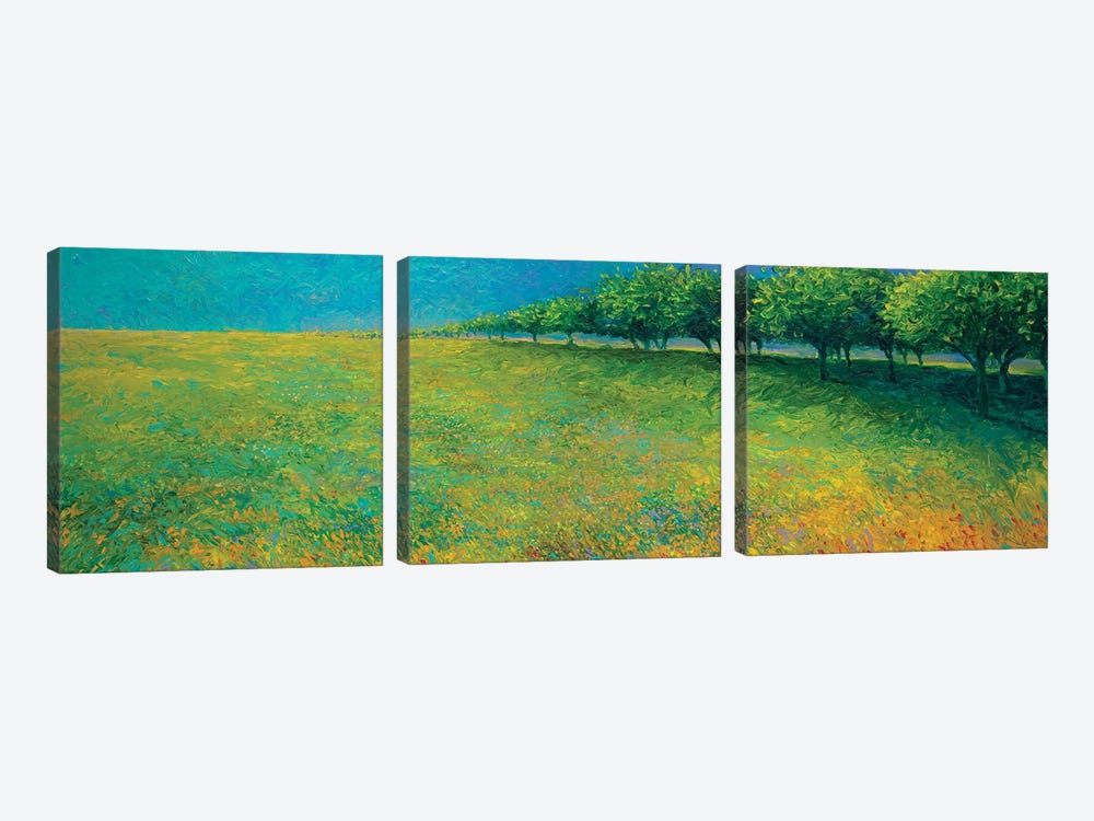 Orchard's Edge by Iris Scott 3-piece Canvas Art Print