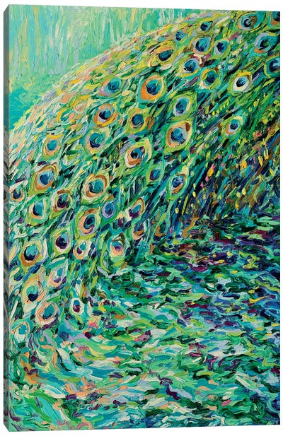 Peacock Diptych Panel I Canvas Print #IRS123