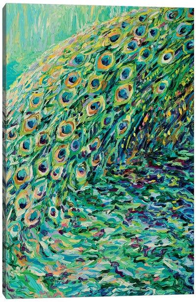 Peacock Diptych Panel I Canvas Art Print