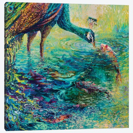 Peacock Diptych Panel II Canvas Print #IRS124} by Iris Scott Canvas Art