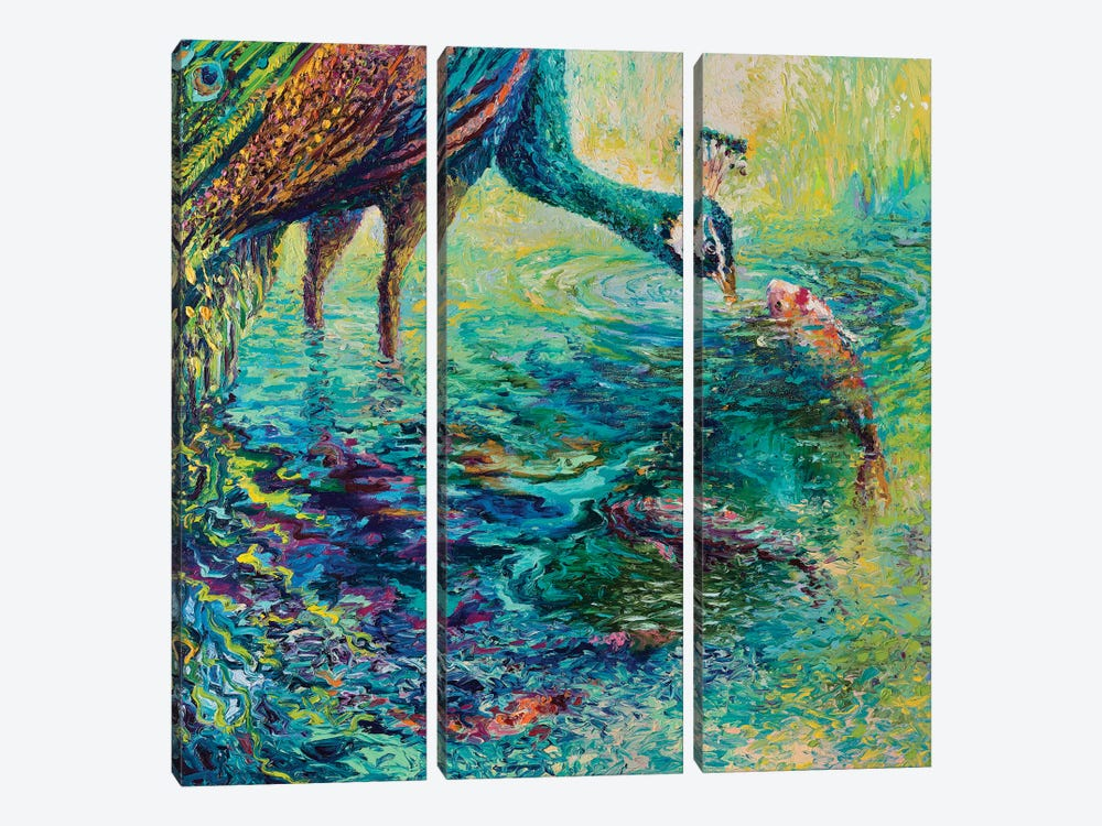 Peacock Diptych Panel II by Iris Scott 3-piece Canvas Print