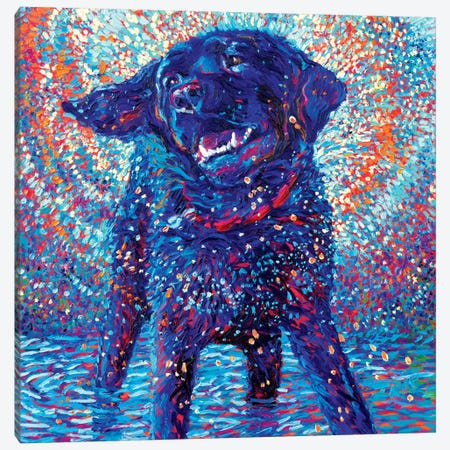 Canines & Color Canvas Print #IRS13} by Iris Scott Canvas Artwork