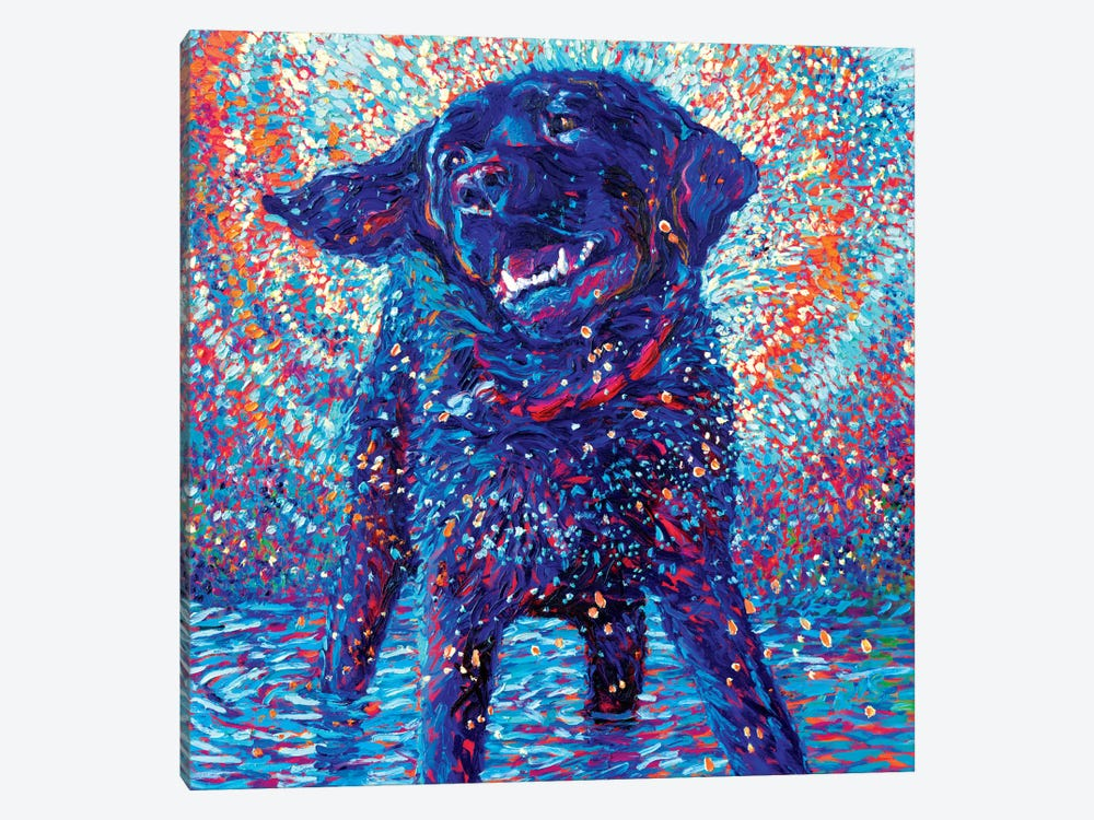 Canines & Color by Iris Scott 1-piece Canvas Wall Art