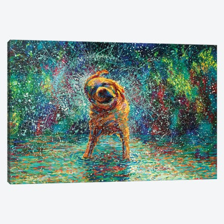 Shakin' Jake Canvas Print #IRS140} by Iris Scott Canvas Print