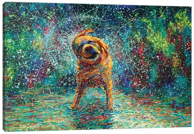 Shakin' Jake Canvas Art Print