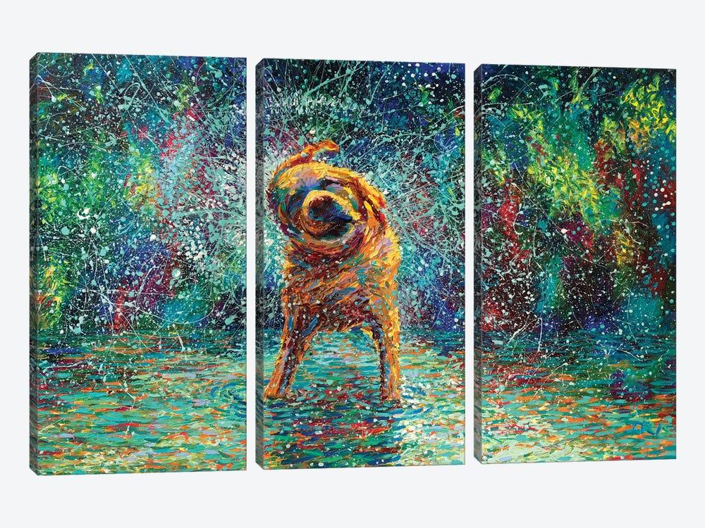 Shakin' Jake by Iris Scott 3-piece Canvas Print