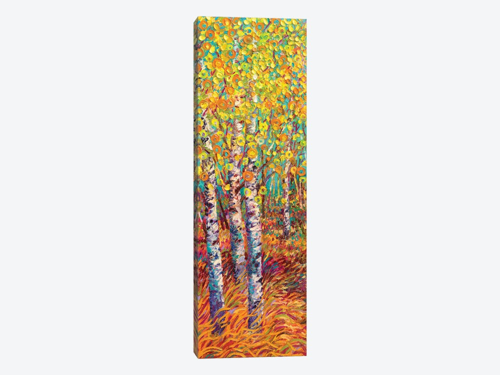 Candyland by Iris Scott 1-piece Canvas Print