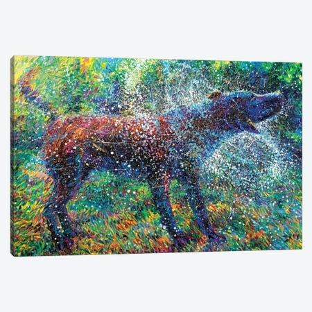 Canis Major Canvas Print #IRS143} by Iris Scott Canvas Art Print