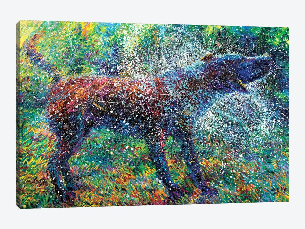 Canis Major by Iris Scott 1-piece Canvas Wall Art