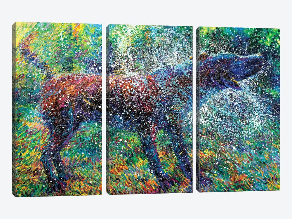 Canis Major by Iris Scott 3-piece Canvas Art