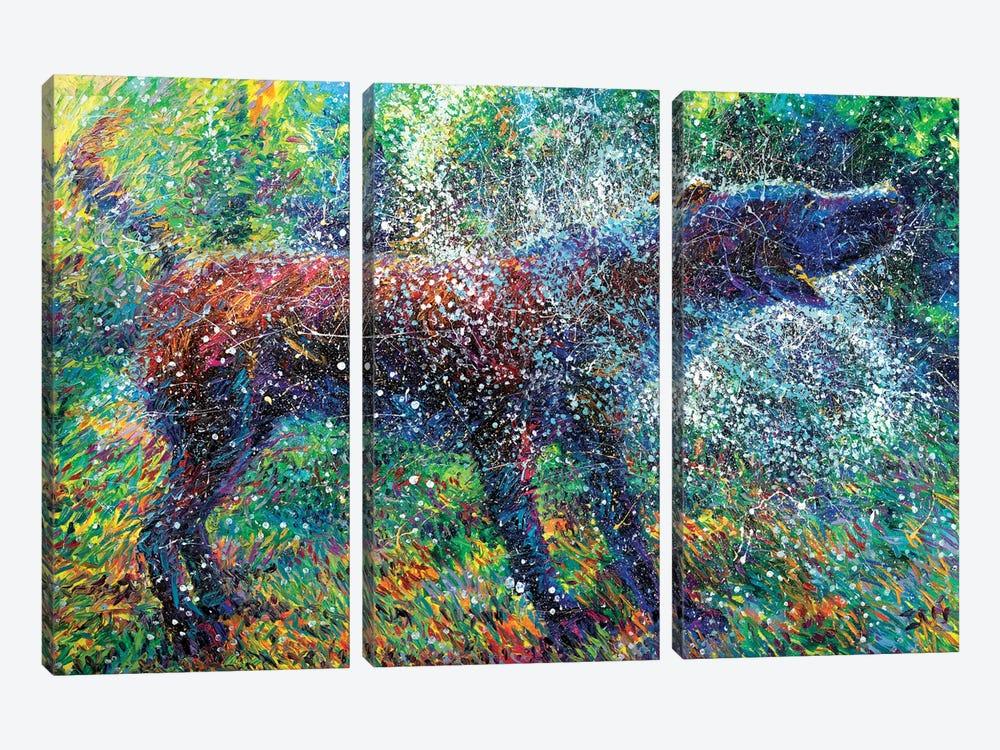 Canis Major by Iris Scott 3-piece Canvas Art