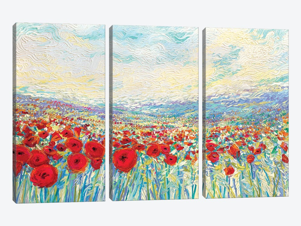 Poppies Of Oz by Iris Scott 3-piece Canvas Print
