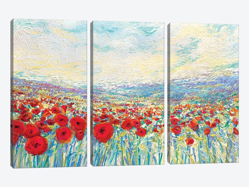 Poppies Of Oz by Iris Scott 3-piece Canvas Print