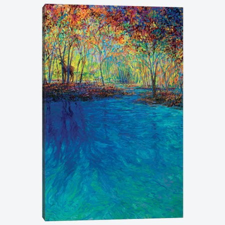 Keoladeo Canvas Print #IRS146} by Iris Scott Canvas Artwork