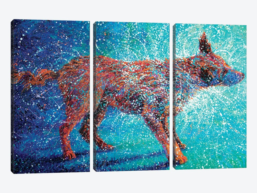Shakin' Off The Cosmos by Iris Scott 3-piece Canvas Wall Art