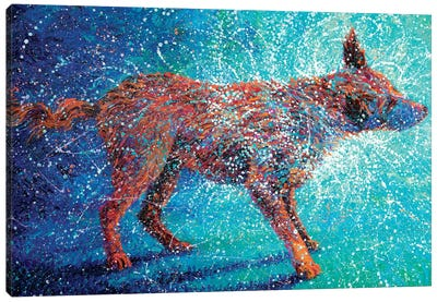 Shakin' Off The Cosmos Canvas Art Print