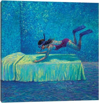 The Diver Canvas Art Print