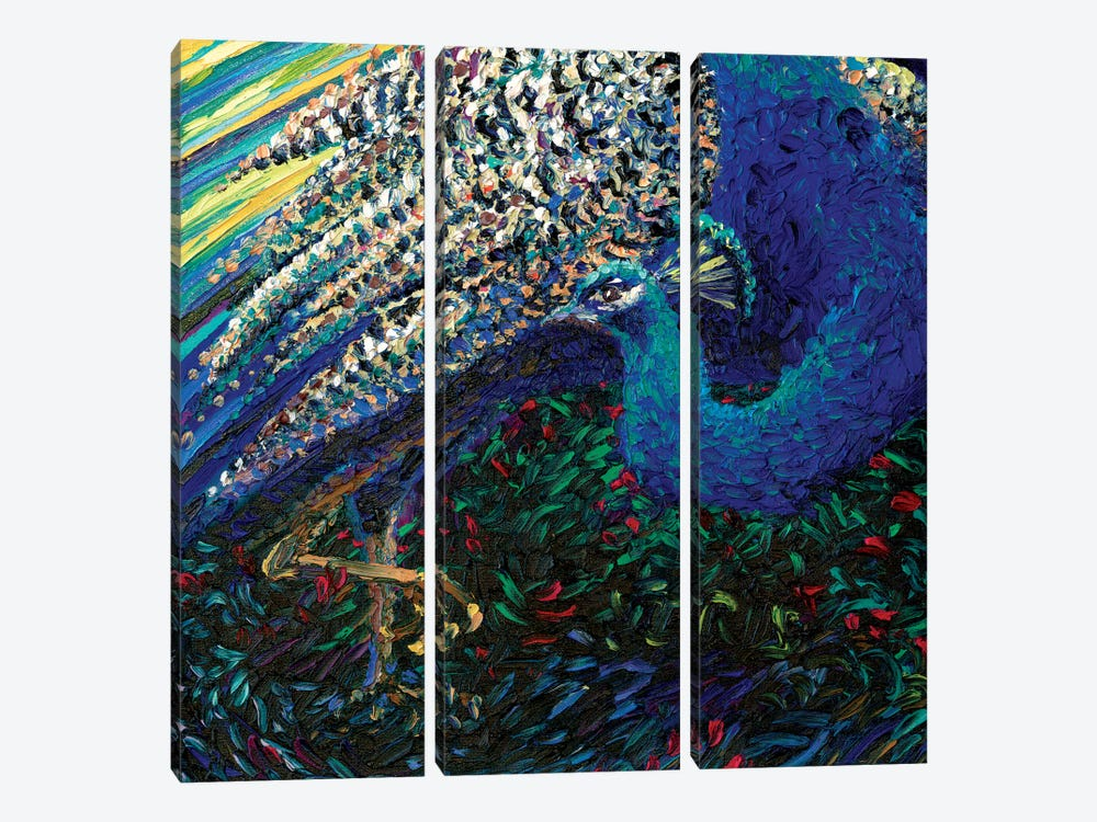 Black Peacock Diptych Panel II by Iris Scott 3-piece Canvas Artwork
