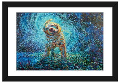 Labrador Jazz Framed Art Print