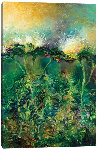 Artichoke Bloom Canvas Print #IRS163