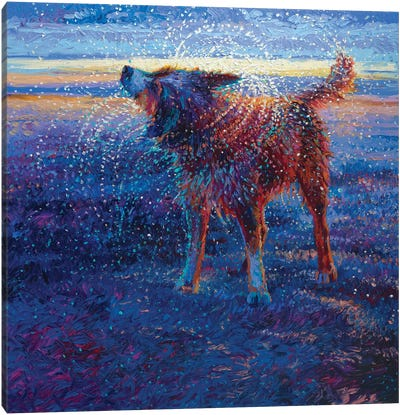 Coastal Canine Canvas Art Print