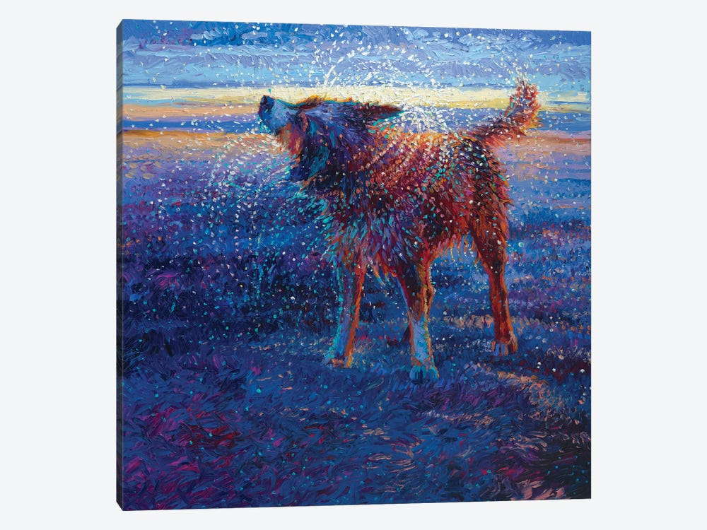 Coastal Canine by Iris Scott 1-piece Canvas Art Print