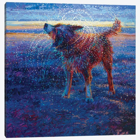 Coastal Canine Canvas Print #IRS164} by Iris Scott Canvas Artwork