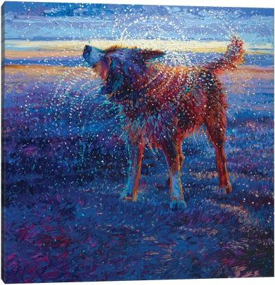 Coastal Canine Canvas Art Print