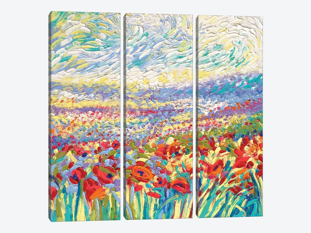 Poppy Study by Iris Scott 3-piece Canvas Art