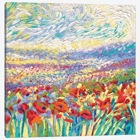 Poppy Study Canvas Print #IRS167} by Iris Scott Canvas Artwork