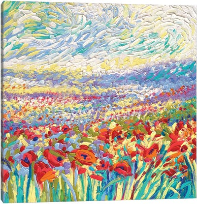 Poppy Study Canvas Art Print