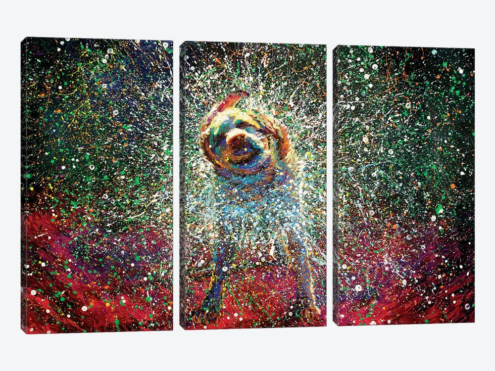 Aquarius by Iris Scott 3-piece Canvas Wall Art