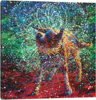 Collie Canvas Art Print