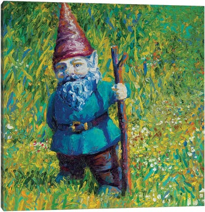 Garden Gnome Canvas Print #IRS179