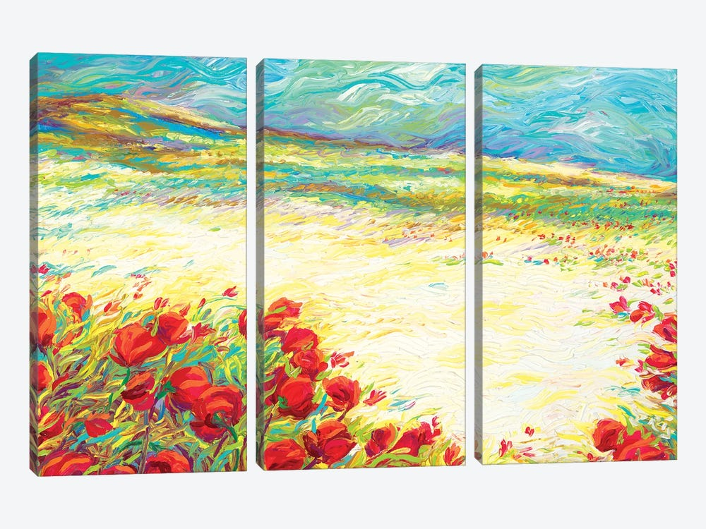 Spring Snow by Iris Scott 3-piece Art Print