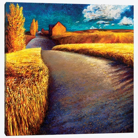 Whispering Wheat Canvas Print #IRS191} by Iris Scott Canvas Wall Art