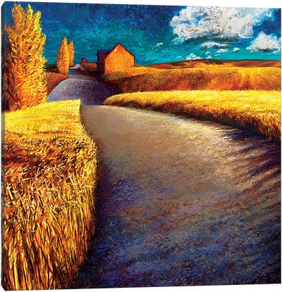 Whispering Wheat Canvas Print #IRS191