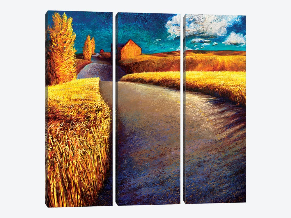 Whispering Wheat by Iris Scott 3-piece Art Print