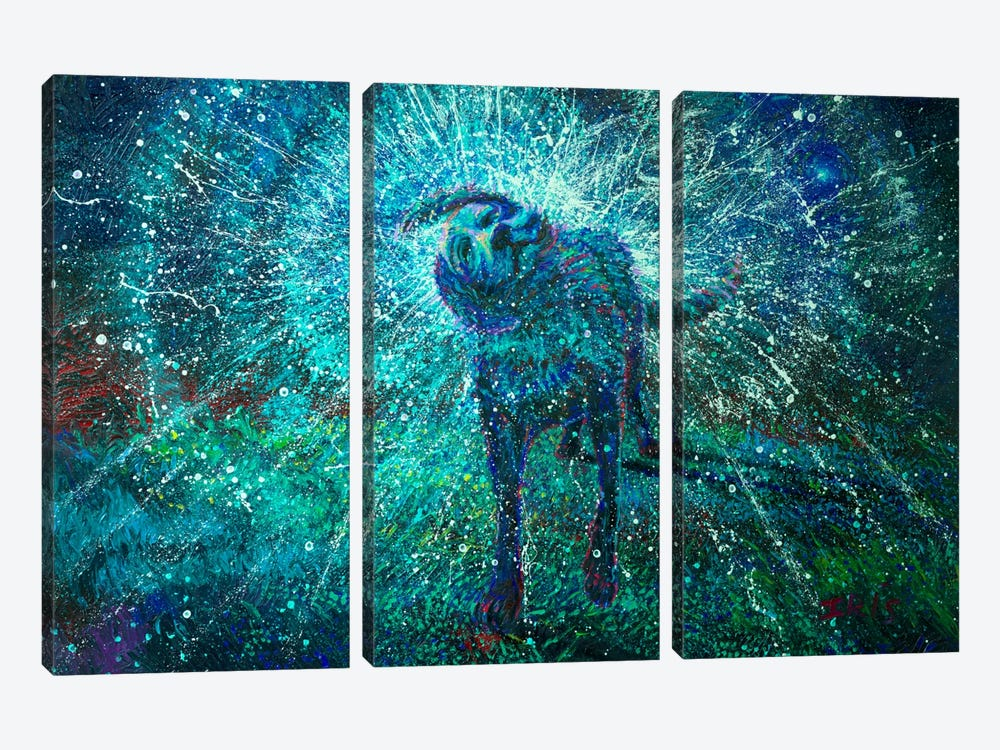 Adonai by Iris Scott 3-piece Canvas Wall Art