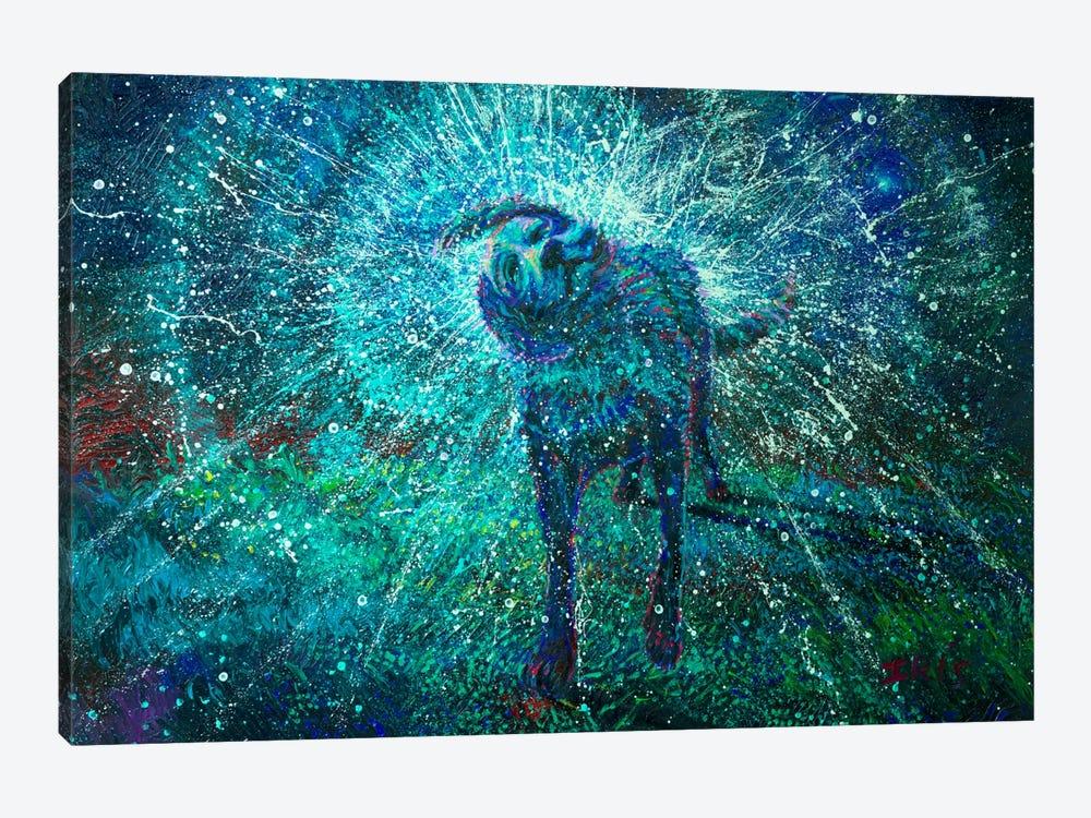 Adonai by Iris Scott 1-piece Canvas Artwork