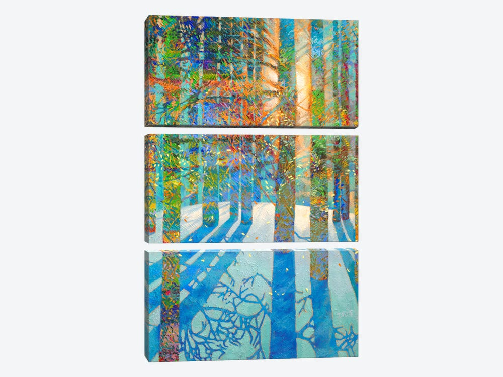 After The Snow Fell by Iris Scott 3-piece Art Print