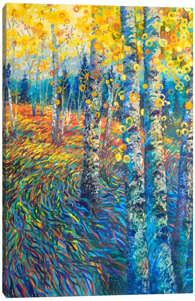 Beyond Candyland Canvas Art Print
