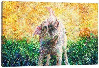 Chloe Canvas Art Print