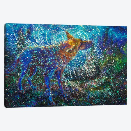 Lobo del Cielo Canvas Print #IRS200} by Iris Scott Canvas Art