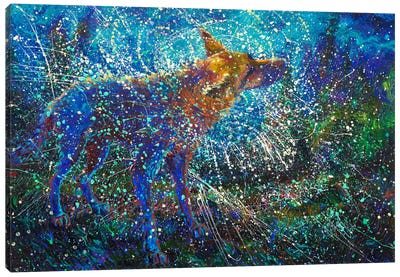 Lobo del Cielo Canvas Art Print