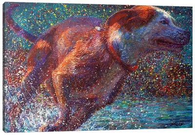 Aquavita Canvas Art Print