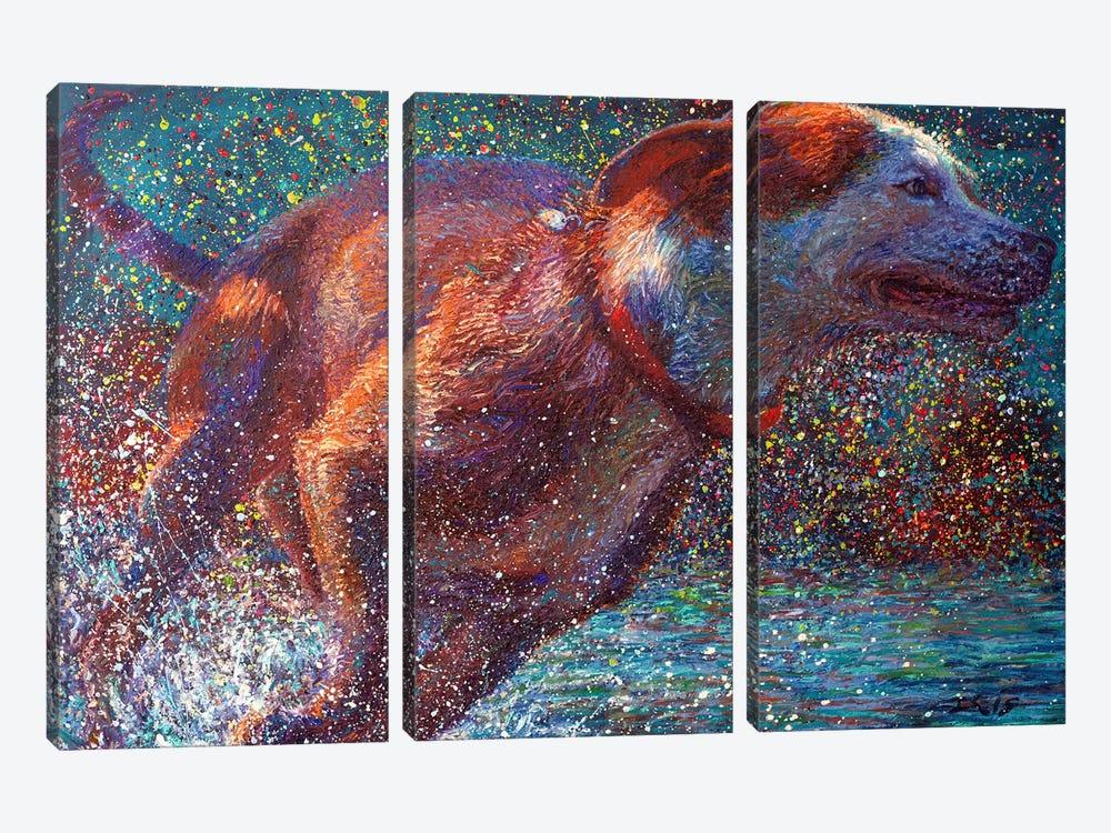 Aquavita by Iris Scott 3-piece Canvas Print