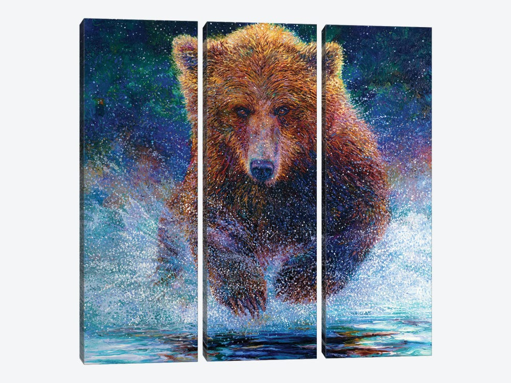 Arctos by Iris Scott 3-piece Canvas Art