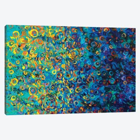 Beach Glass Canvas Print #IRS206} by Iris Scott Art Print
