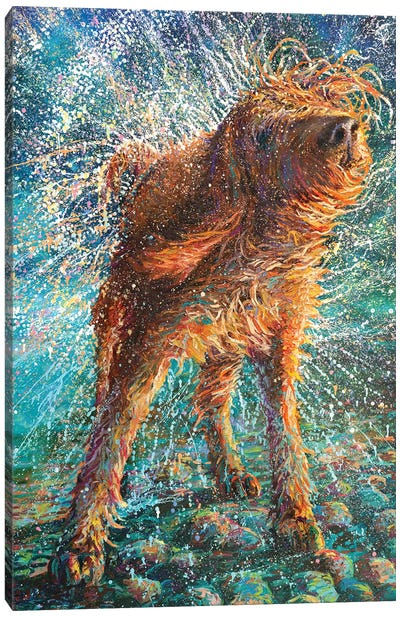 Beaded Threads Canvas Art Print